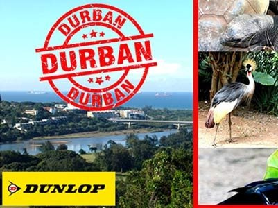 TAKE AN AMAZING #DAYCATION IN DURBAN AND WALK ON THE WILD SIDE OF LIFE!